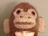 Monkey toque